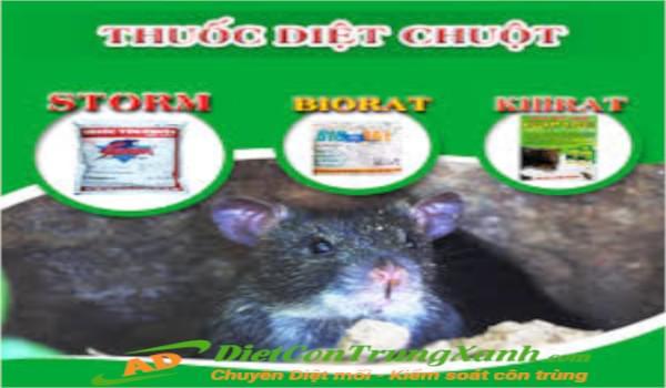 Địa chỉ Bán thuốc diệt chuột uy tín tại Hà Nội