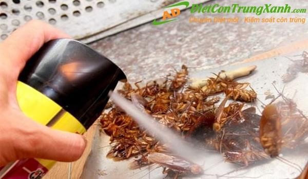 Tác hại khôn lường nếu không biết cách sử dụng thuốc diệt côn trùng